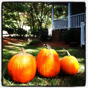 Love me some pumpkins!